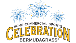 Celebration® Bermudagrass