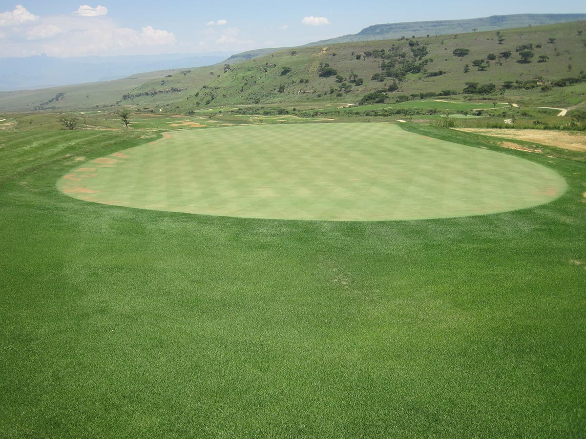 Seeding - Nondela Hole 1